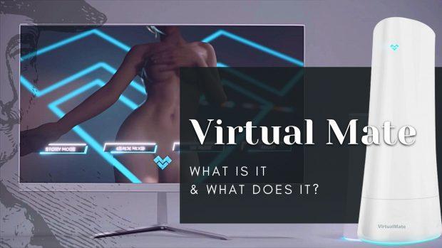 Virtual Mate sex toy